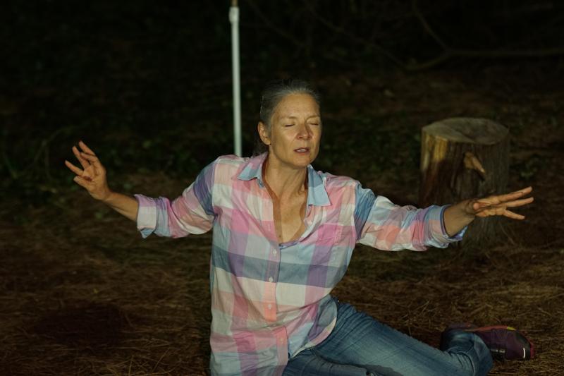 60 minutes dans la vie d'une forêt